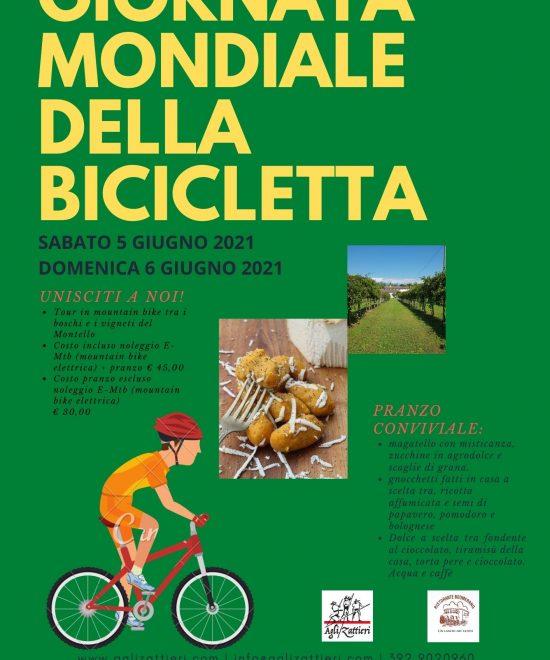 Tour in mountain bike con pranzo a base di prodotti tipici del Montello